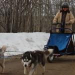 arctis cart 014