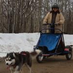 arctis cart 015
